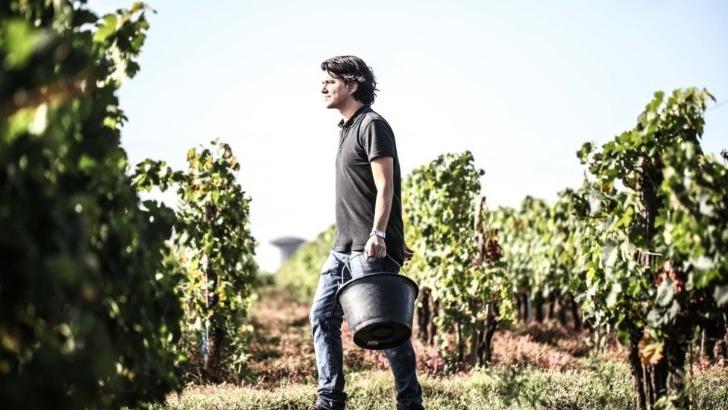 vins-alcools-domaine-chateau-des-annereaux-a-lalande-de-pomerol