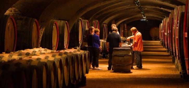 beaujolais-pour-amoureux-bon-vin