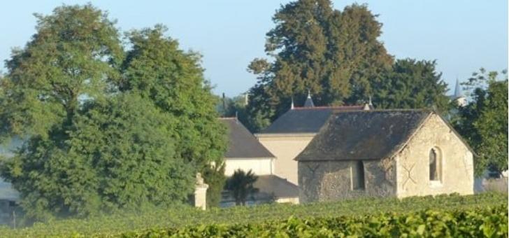 vignes-et-des-maisons-traditionnelles