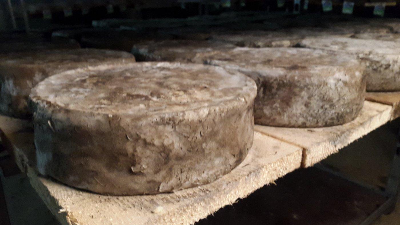 ferme-de-gennetay-tomes-cave