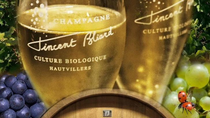 champagne-vincent-bliard-des-champagnes-au-caractere-affirme-et-issus-d-une-culture-biologique