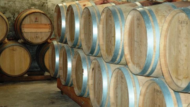 roques-de-cana-un-vieillissement-fut-de-chene-enrichit-vins-aromes