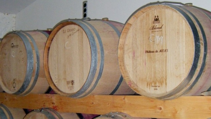 vins-alcools-domaine-chateau-mons-delaunay-earl-philippe-delaunay-a-berson