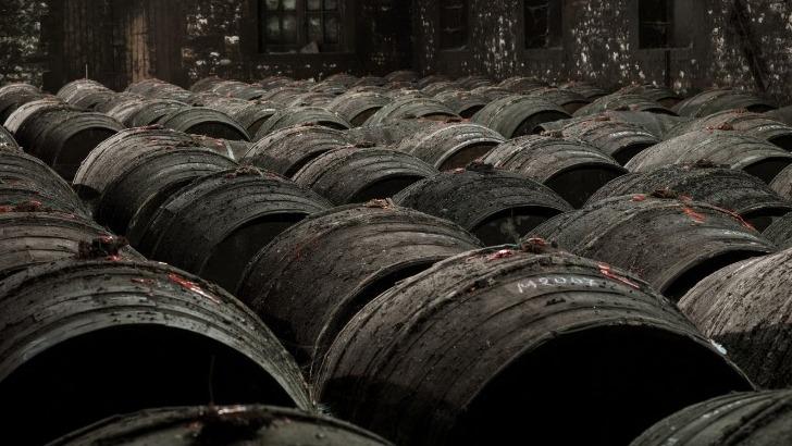 spiritourisme-oenotourisme-cognac-frapin-a-segonzac