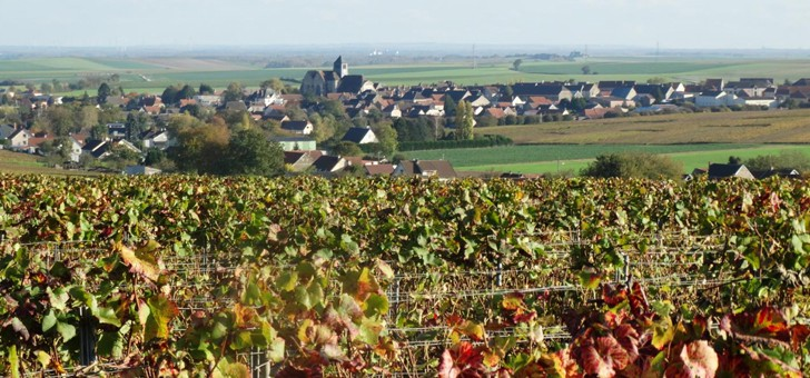 vins-alcools-domaine-champagne-michel-marcoult-pere-et-fils-a-barbonne-fayel