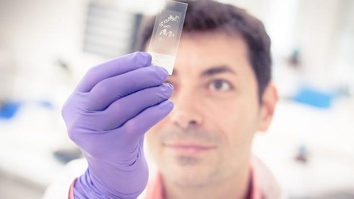 sps-gsr-pour-innovation-et-transfert-sciences-du-vegetal