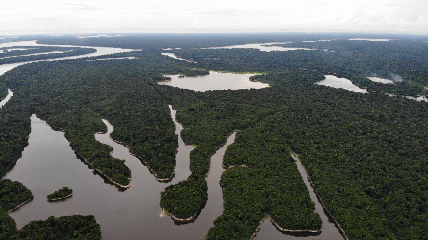 heliconia-amazonia-des-paysages-spectaculaires-meritent-detour