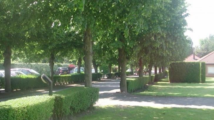 centre-hospitalier-de-somain-a-somain-offre-de-soins-diversifiee-environnement-verdoyant