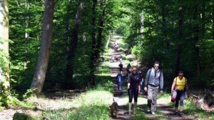 federation-francaise-des-sports-populaires-a-strasbourg-ressourcer-au-coeur-de-nature