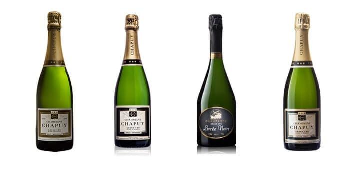 des-champagnes-expriment-a-merveille-terroir