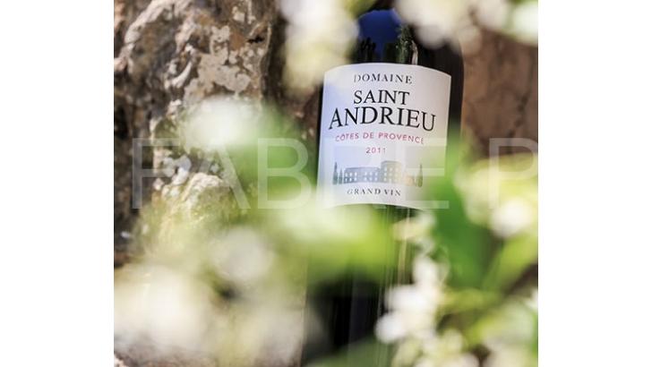 domaine-saint-andrieu-seconde-partie-du-domaine-est-consacree-a-appellation-aoc-cotes-de-provence-avec-un-sol-argilo-calcaire-favorisant-drainage-naturel