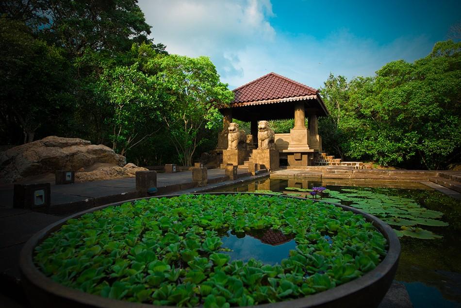voyage-de-legende-sri-lanka-un-pays-a-contraste-et-riche-patrimoine-culturel