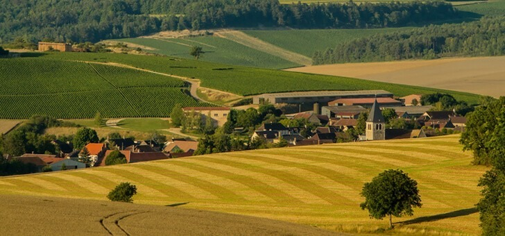 panorama-sur-vignes