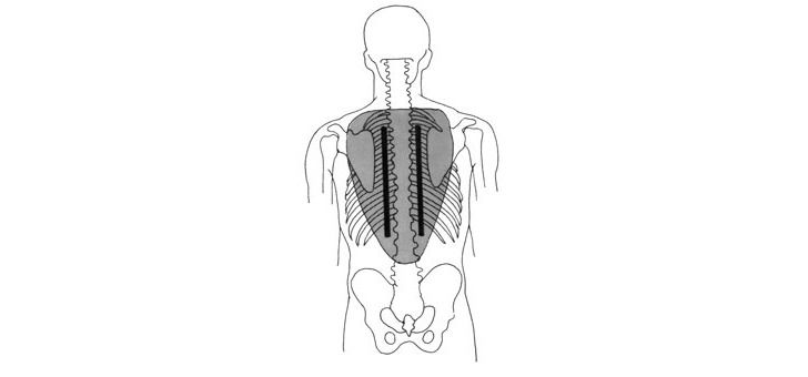 spinup-a-nanterre-aide-a-repositionner-replacer-correctement-colonnes-vertebraux