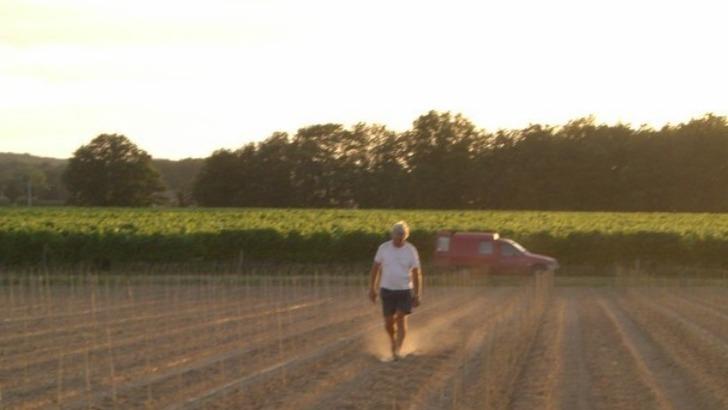domaine-des-pradelles-a-vacquiers-17-ha-de-vignes-cultivees-sur-un-sol-de-boulbenes-et-de-limons