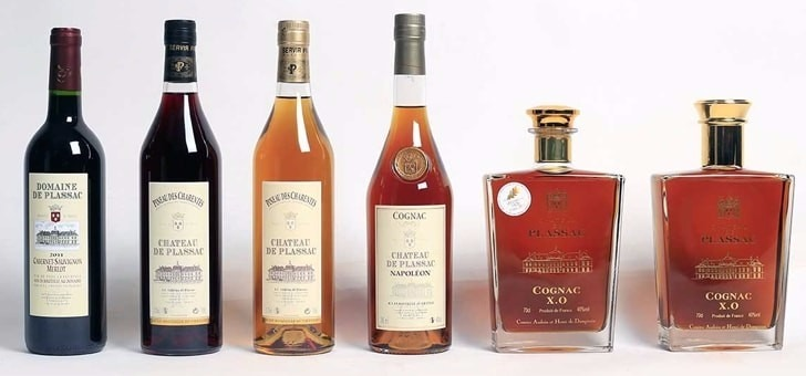 tradition-passion-decouverte-du-cognac-pineau