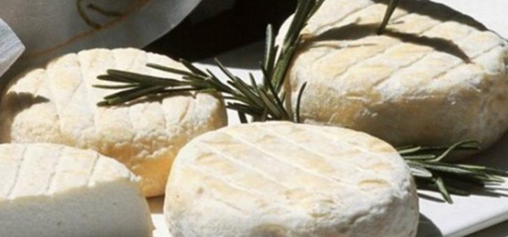 pays-de-dieulefit-bourdeaux-fromage-picodon-un-des-produits-ambassadeurs-du-pays-issu-d-un-savoir-faire-ancestral