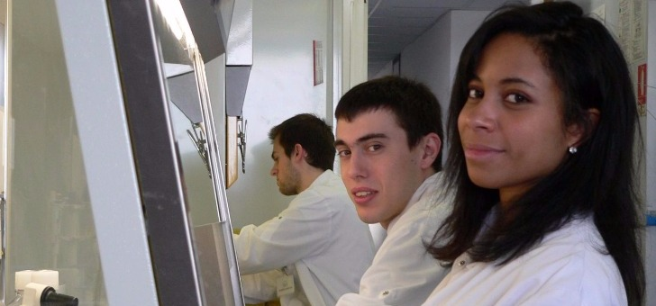 former-de-jeunes-chercheurs