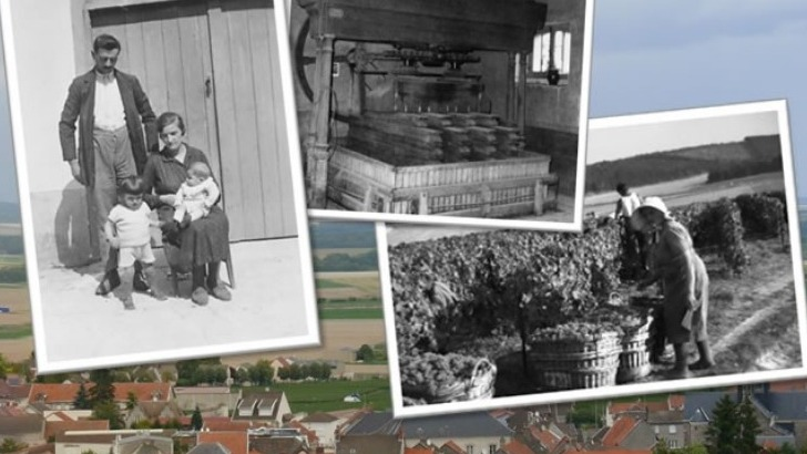 champagne-boutillez-marchand-a-villers-marmery-un-domaine-familial-riche-d-histoire