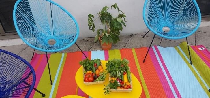 cueillette-urbaine-des-paniers-sont-disponibles-a-vente
