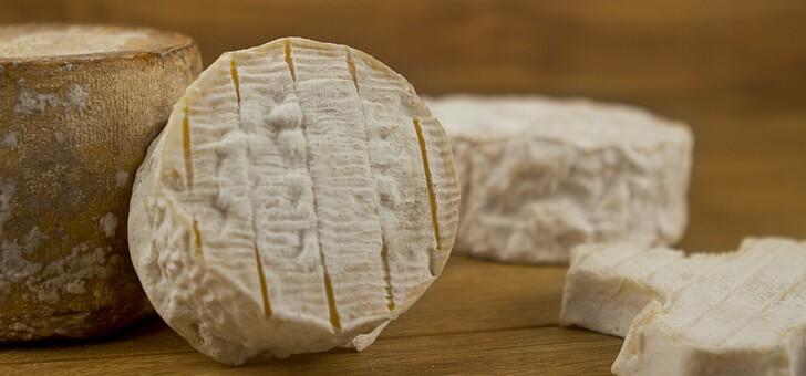 des-fromages-de-grande-qualite-gustative
