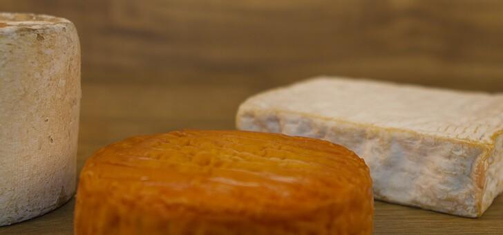 un-vaste-choix-de-fromages