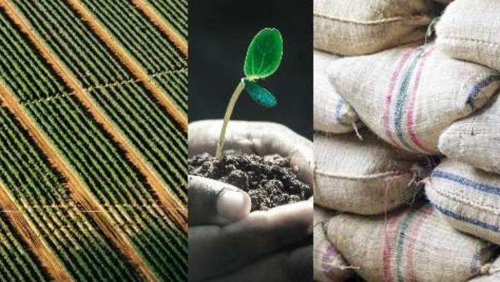 e-tumba-faciliter-travail-des-techniciens-agronomes-de-terrains