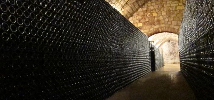 domaine-nomine-renard-a-villevenard-120-000-bouteilles-produites-chaque-annee