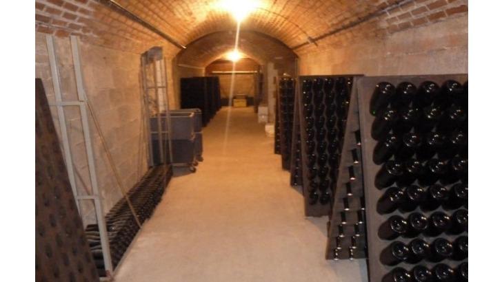 champagne-th-petit-un-bon-elevage-cave-aboutit-a-des-vins-de-caractere-et-expressifs
