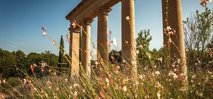chateau-fontainebleau-a-val-viticulture-biodynamique