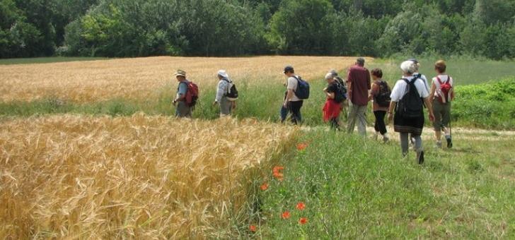 le-pays-de-dieulefit-bourdeaux-des-visites-pedagogiques-axees-sur-l-elevage-et-l-agriculture-immergent-les-eleves-dans-la-vie-de-la-ferme
