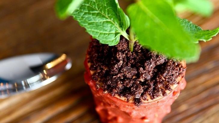 brasserie-flow-dessert-pot-de-fleurs