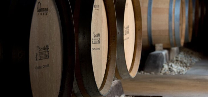 a-decouverte-du-savoir-faire-viti-vinicole