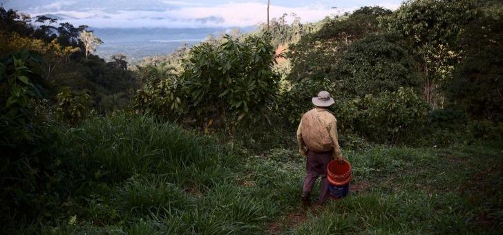 un-commerce-equitable-interets-humains-et-environnementaux-passent-avant-profit