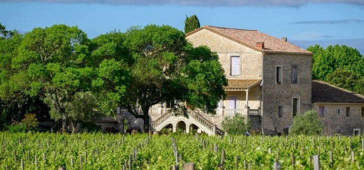 chateau-roque-a-fontanes-un-domaine-viticole-perdu-au-coeur-d-une-nature-luxuriante