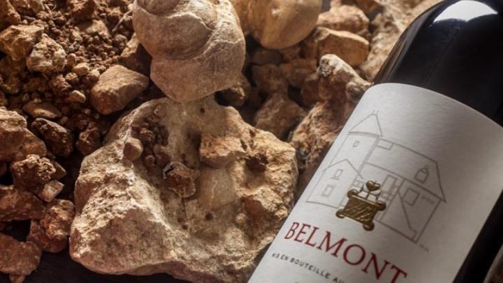 domaine-belmont-un-sol-argilo-calcaire-pour-des-vins-de-caractere