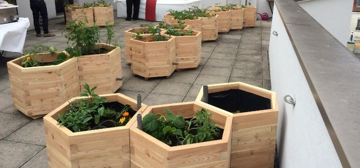 cueillette-urbaine-un-exemple-de-jardinieres-autosuffisantes