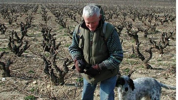 chateau-de-segries-vigneron-a-pied-d-oeuvre