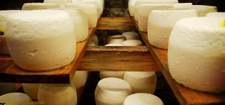 saveurs-de-nos-fermes-a-gilly-sur-isere-des-produits-frais-et-savoureux-issus-de-nos-exploitations
