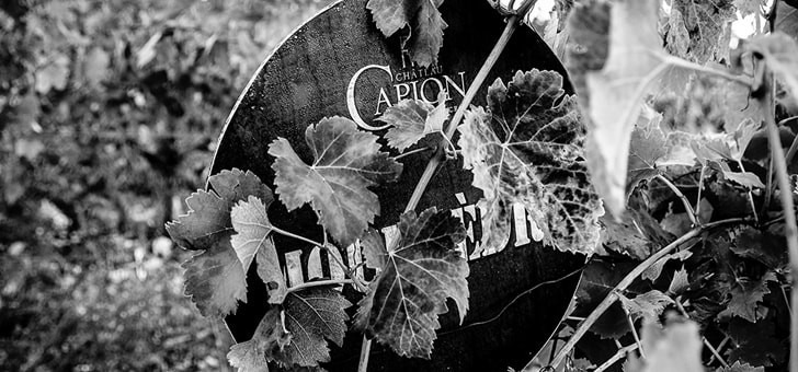 chateau-capion