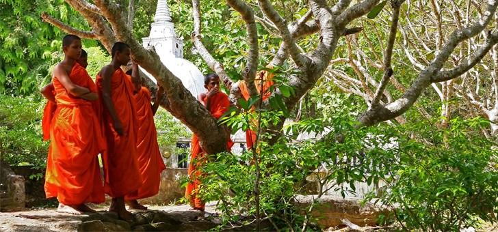 voyage-de-legende-immerger-dans-un-univers-de-civilisation-antique-et-de-tresors-historiques-sri-lanka