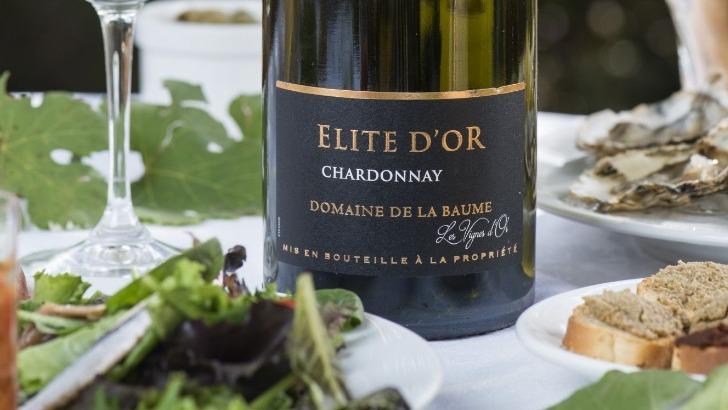 vin-vignoble-du-languedoc-a-languedoc