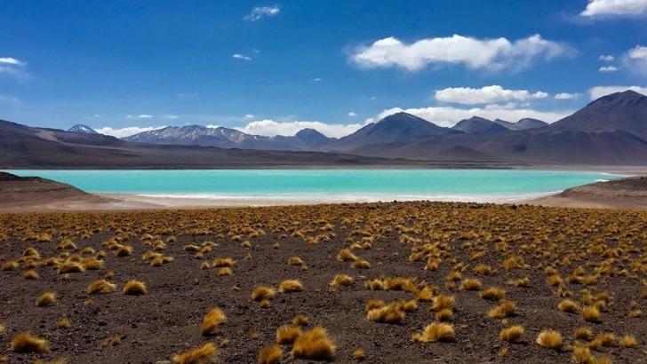 thaki-voyage-partir-a-decouverte-de-laguna-verde-un-lac-sale-situe-dans-une-reserve-nationale-de-bolivie