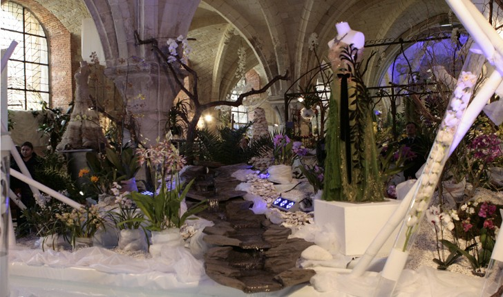 expo-internationale-orchidees-abbaye-vaucelles