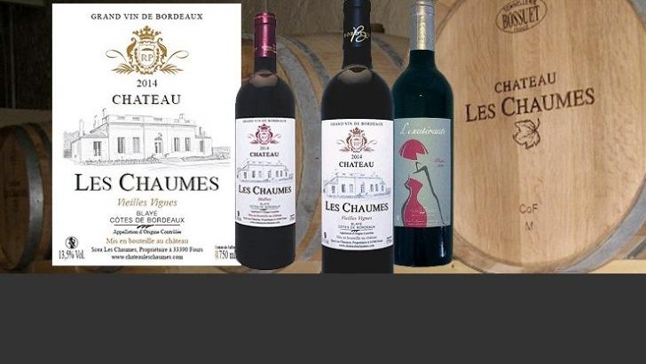 chateau-chaumes-de-grands-vins-de-bordeaux-issus-de-vielles-vignes