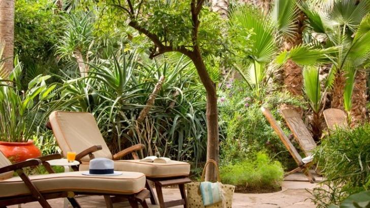 dans-une-clairiere-au-coeur-du-jardin-ouverte-et-ombragee-un-espace-fitness-est-acces-libre-a-votre-convenance-pourrez-utiliser-tapis-de-course-velo-elliptique-stepper-tout-contemplant-jardin-et-ecoutant-chants-des-oiseaux
