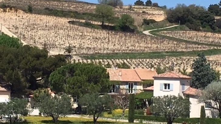 vins-alcools-domaine-domaine-des-girasols-a-rasteau
