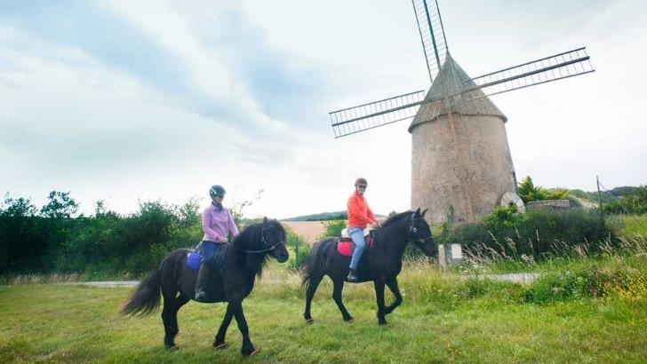 balade-equestre-pres-de-ribouisse