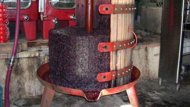 clos-du-marbrier-un-materiel-adapte-concourt-a-elaboration-de-vins-frais-et-elegants