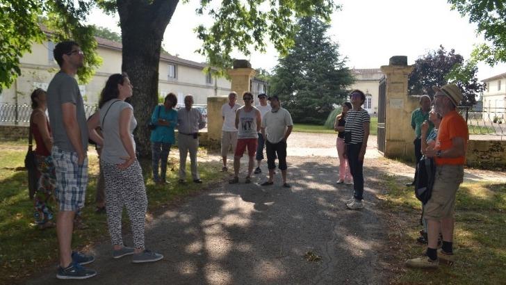 chateau-chaumes-des-offres-oenotouristiques-rassemblent-visiteurs-autour-d-une-passion-commune